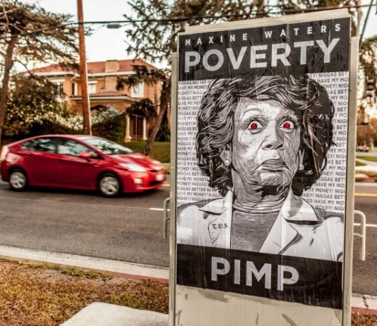 Maxine-Waters-Posters