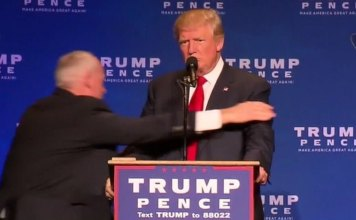 trump right side of the fight