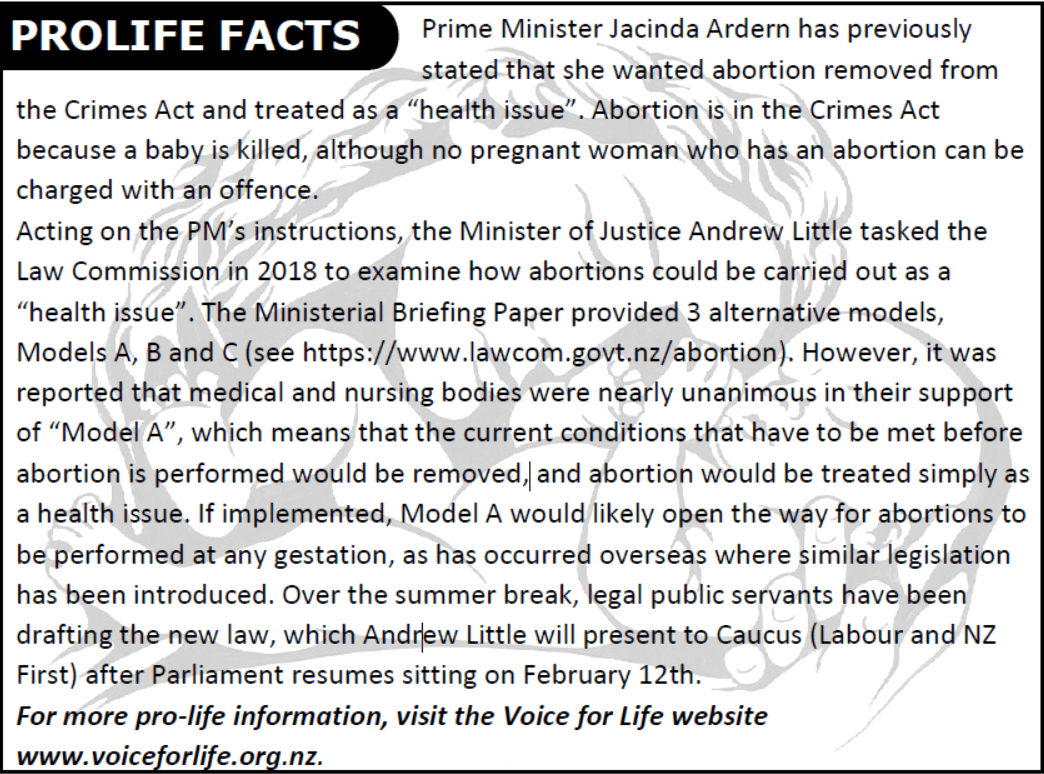 Prolife Bulletin 383