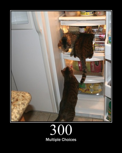 300 Multiple Choice - It indicates that client can follow multiple options for the resources.