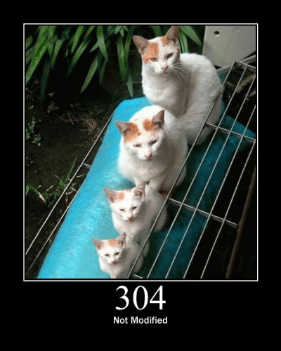 304 Not Modified - Indicates the resource has not been modified since last requested.