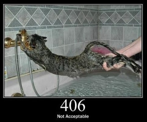 406 Not Acceptable  The requested resource is only capable of generating content not acceptable according to the Accept headers sent in the request.