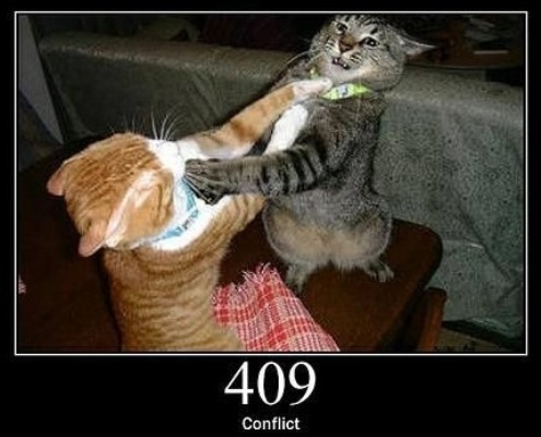 409 Conflict  Indicates that the request could not be processed because of conflict in the request.