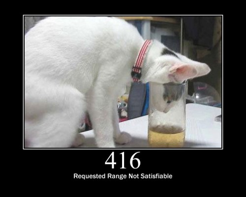 416 Requested Range Not Satisfiable The client has asked for a portion of the file, but the server cannot supply that portion.