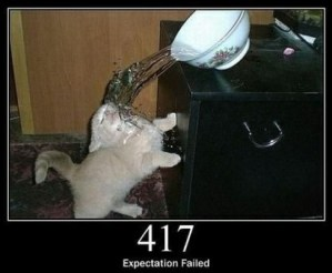 417 Expectation Failed The server cannot meet the requirements of the Expect request-header field.