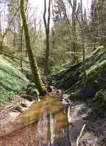 Ture dalar naturreservat.