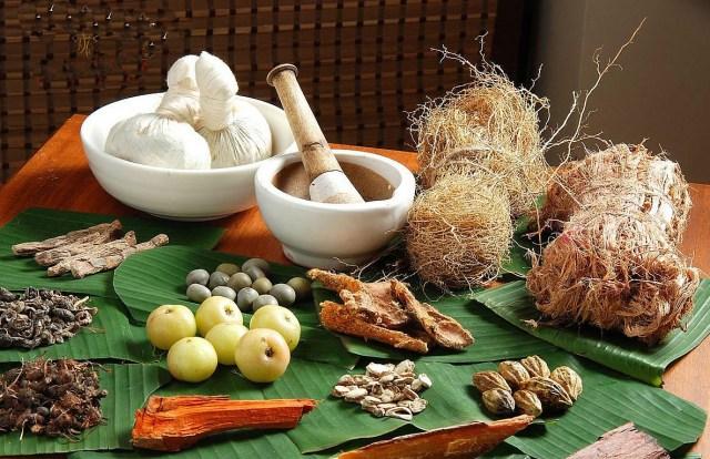 medicinas-herbales