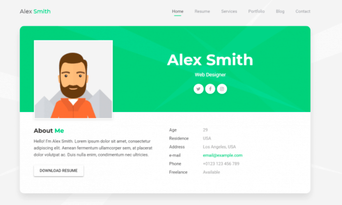 Nick is a web developer, focusing on front end development and ux,. 30 Best Software Developer Portfolio Templates Free Paid Rigorous Themes