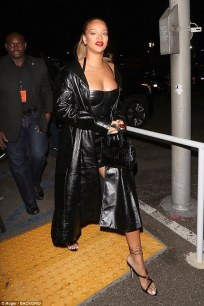 Rihanna attends Jay-Z's concert in Los Angeles December 21, 2017