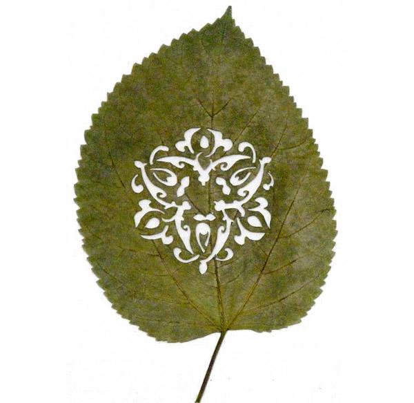 Art on leaves (1/4)