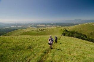 HAHLIĆI Trail - Jan Mastrovic