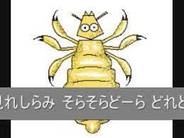 yjimageN0770E51