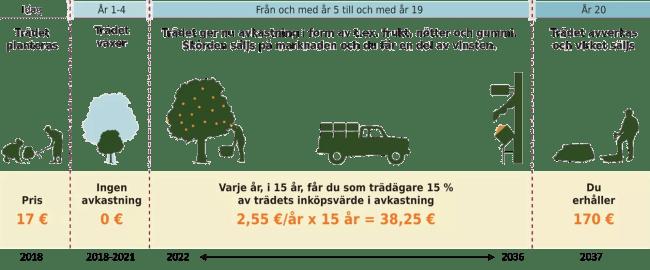 Illustration av hur Better Globe avkastningen från ett träd fungerar