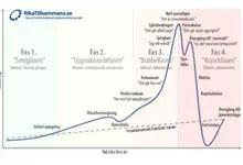 Försättsbild till artikeln: En bubblas uppgång, olika faser och krasch - De olika faserna i en marknadsbubblas liv