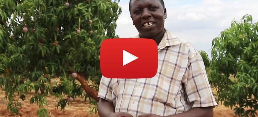 Försättsbild till artikeln: Better Globe hjälper fattiga bönder öka avkastningen - Intervju med Samuel Mulli - en av Better Globes outgrower-bönder