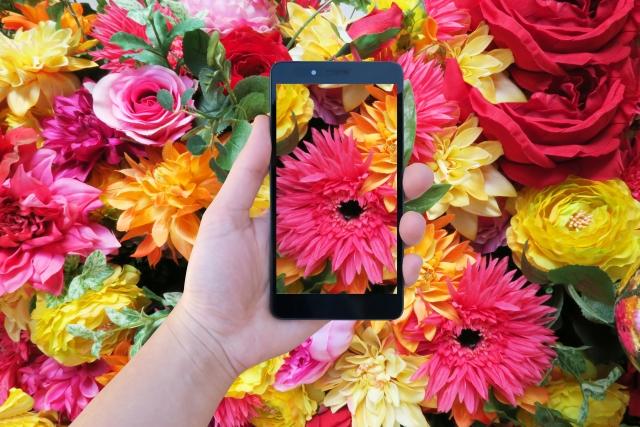 スマートフォンと色鮮やかな花