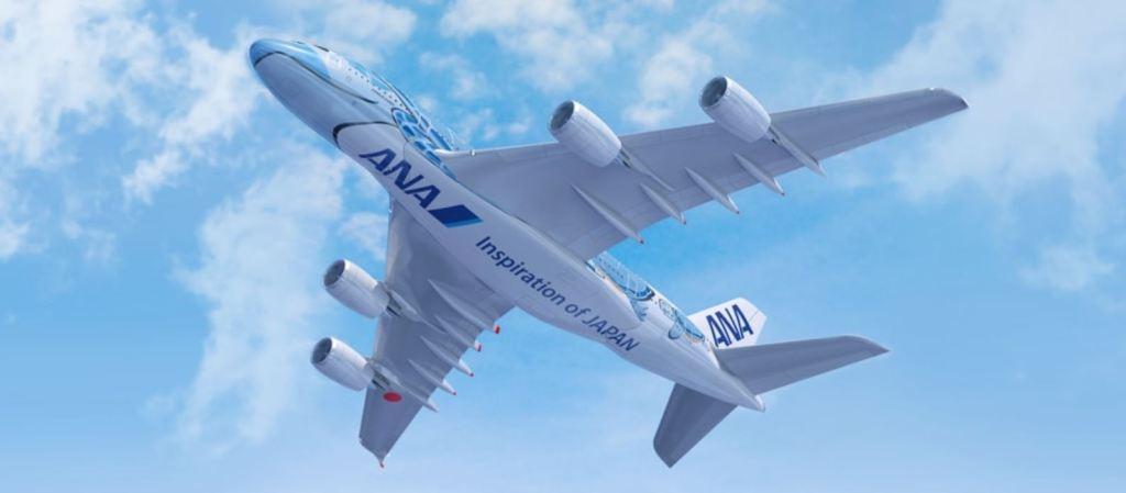 ANAハワイ線に就航するA380のお腹