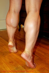 Rikochan FBB Progress Calves
