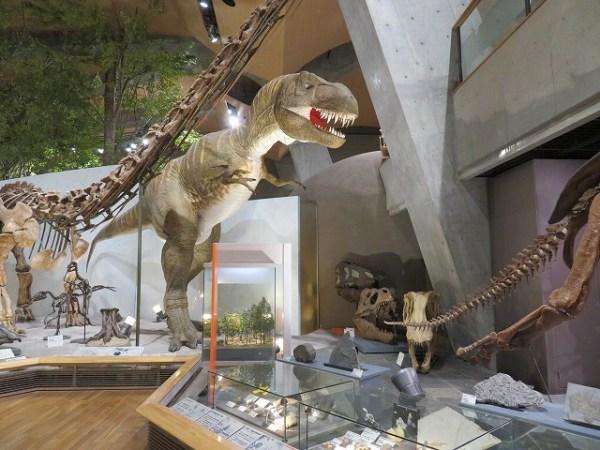 群馬県立自然史博物館 ティラノサウルス