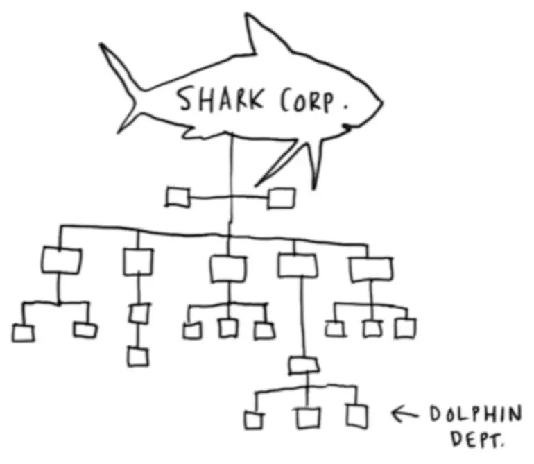 Shark Corp; Dolphin Department