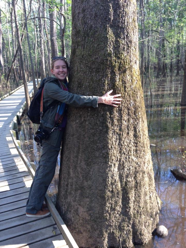 Hugging Trees in Congaree
