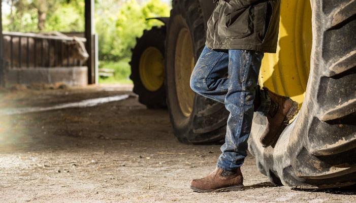 Image result for Panduan Cara Menentukan Safety Shoes yang Sesuai
