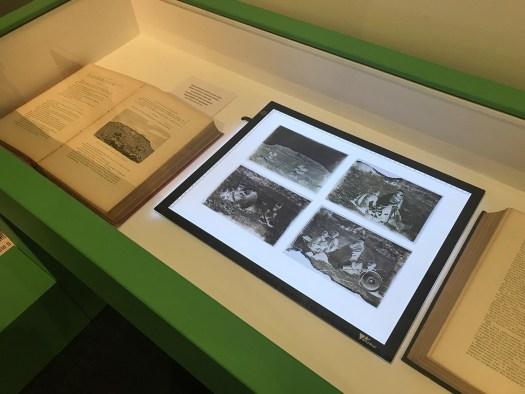 vitrine Borelli de l'exposition Rimbaud photographe