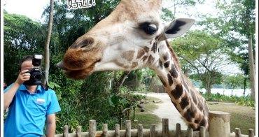 新加坡日間動物園