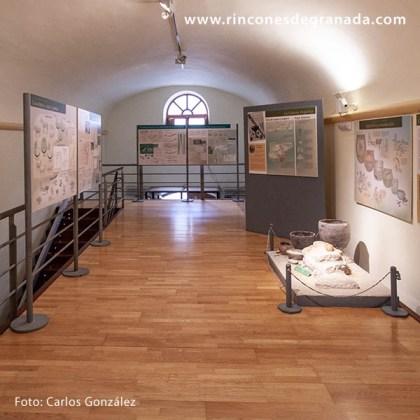 PRIMERA PLANTA - MUSEO DE GALERA