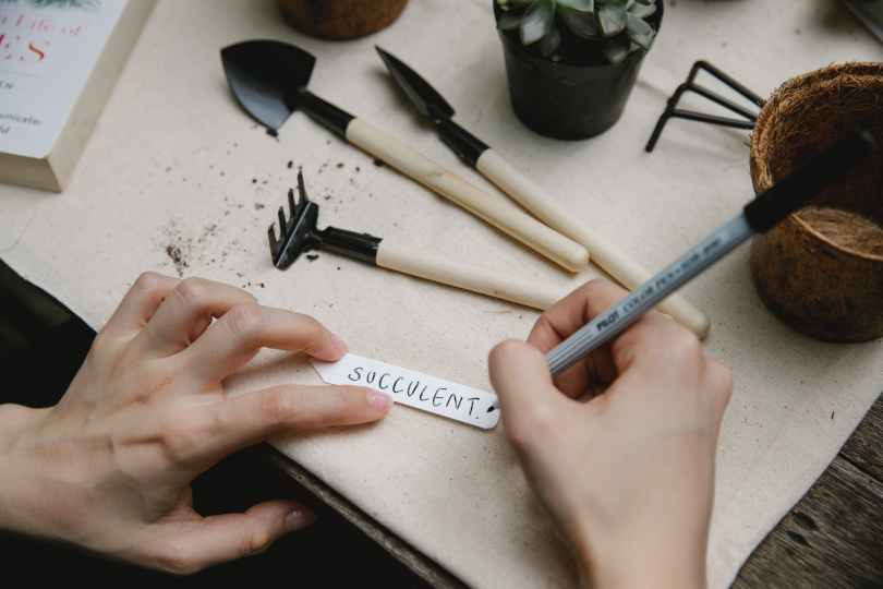 person writing name of plant on tag