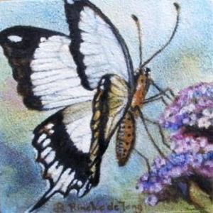 P9091836-vlinder-web-300x300 Hoe maak ik een miniatuur