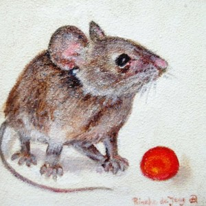 muis met bes.