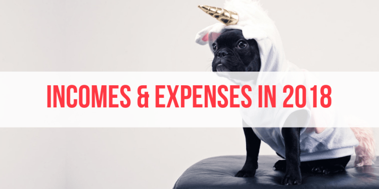 expenses in 2018