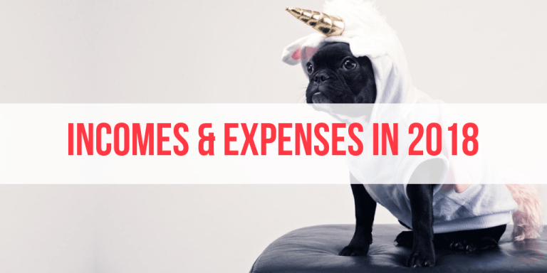 My Total Income and Expenses in 2018