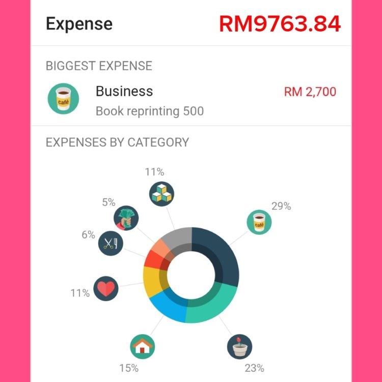 budget update june 2019