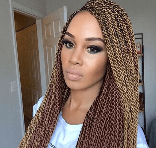 Two Toned Twisted Braids