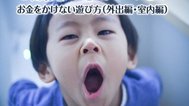 3歳男の子がハマる!