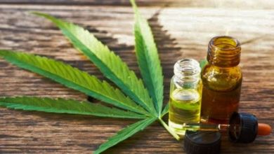 Photo of La Rioja avanza hacia la producción de aceite de cannabis con fines medicinales