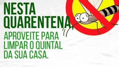 Foto de Nesta quarentena, aproveite para limpar o quintal da sua casa!!