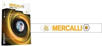 Mercalli V4