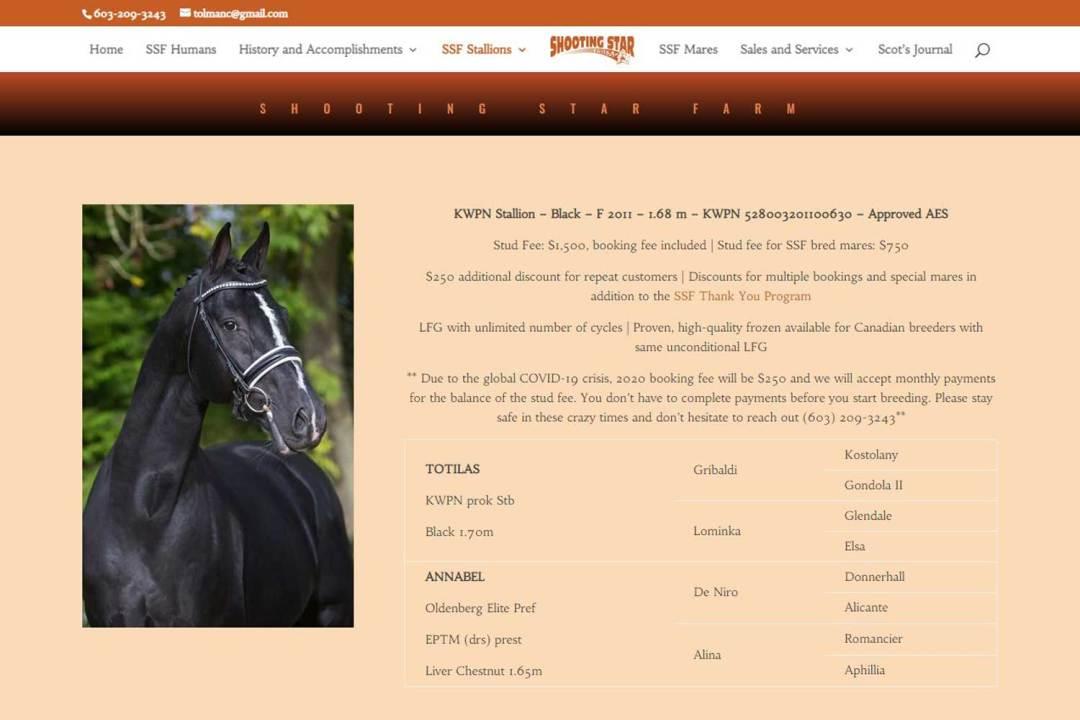 Link to Gaudi KWPN-NA Stallion Website