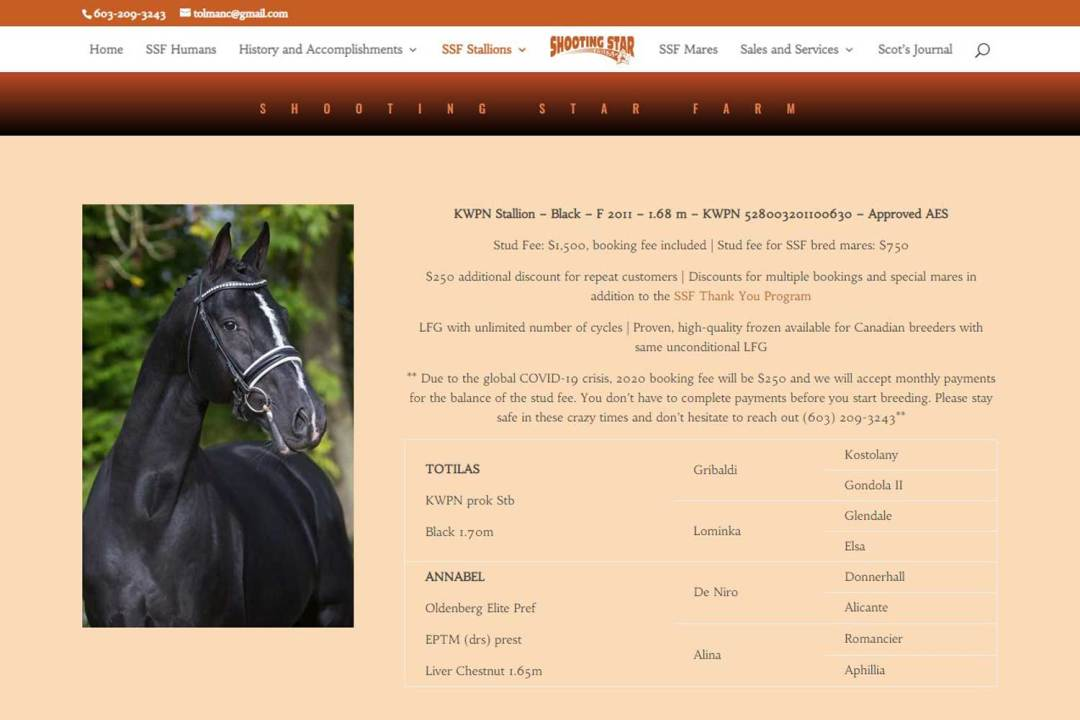 Link to Gaudi KWPN-NA Stallion Website