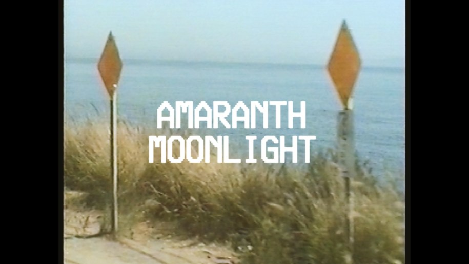 Old Sea Brigade & Luke Sital-Singh - Amaranth Moonlight