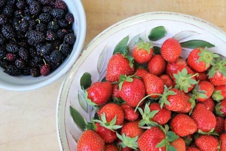 Fresh garden strawberries and mulberries.