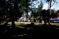 2001Skullfight16af37