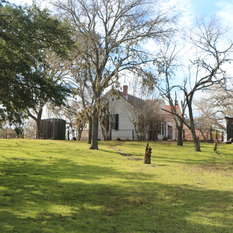 If you're visiting Fredericksburg Texas with kids, don't miss the Sauer-Beckmann Farmstead