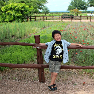 Visiting Fredericksburg Texas with Kids – What you need to know