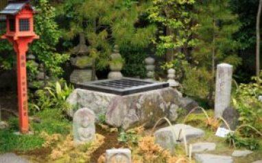 黄泉がえりの井戸