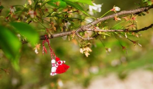 Sursa foto Shutterstock