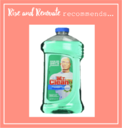 RR-Recommends-MultiSurfaceCleaner